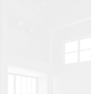 Белый Люкс.jpg